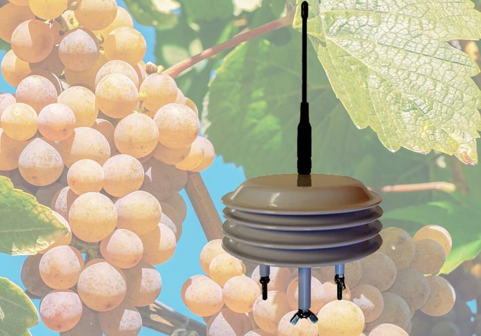 Webinar 24 juillet 10:00 2020 – Découvrez la variété des capteurs IoT NKE Watteco