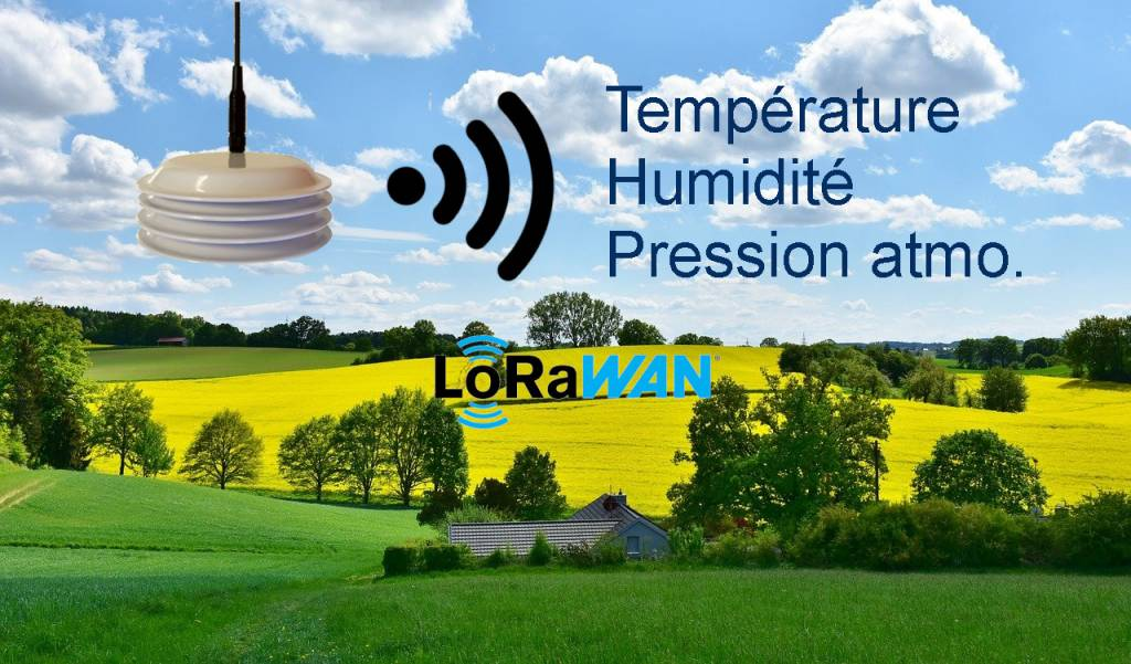 Application LoRaWAN Agriculture